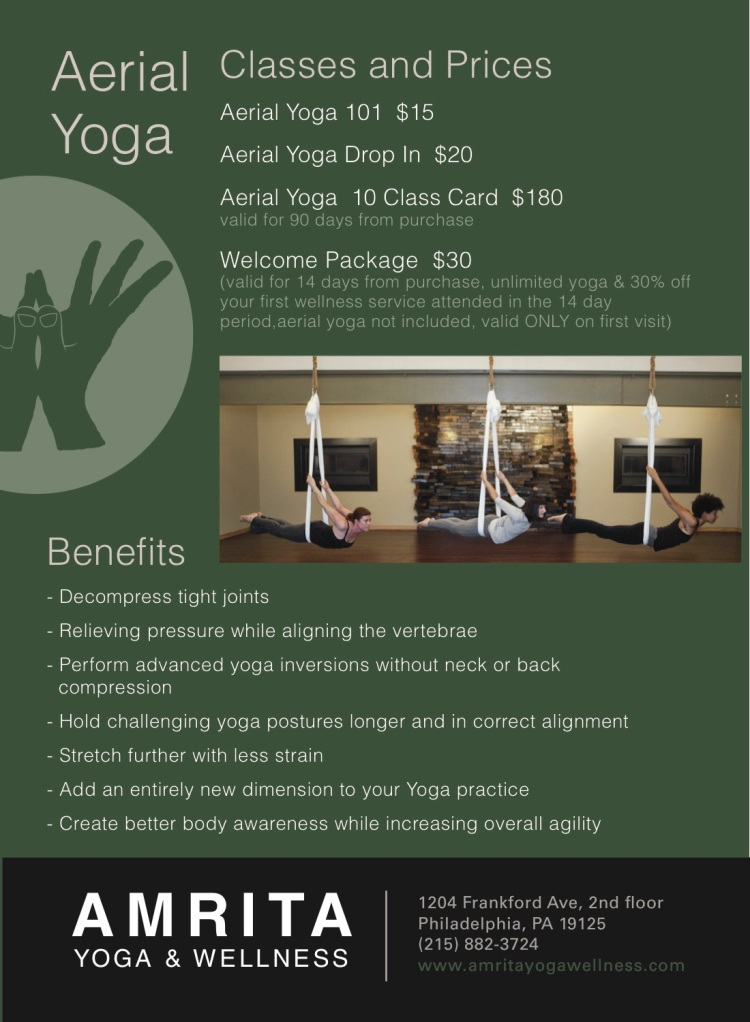 aerial yoga promo back